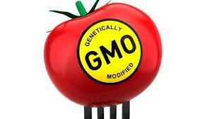 GENETICALLY MODIFIED FOODS: HAZARDOUS TO YOUR HEALTH @ MindBody Medicine Center | Scottsdale | Arizona | United States